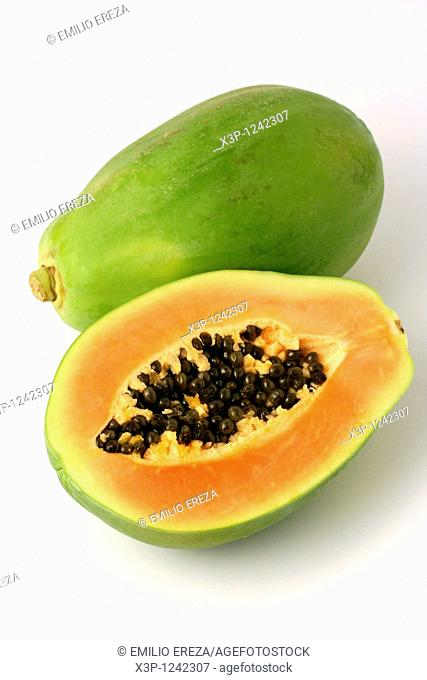 Papaya Carica papaya