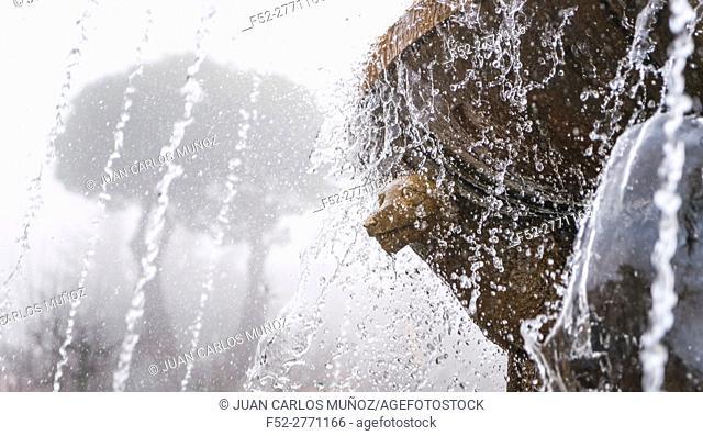Piornal, Jerte Valley, Cáceres, Extremadura, Spain, Europe