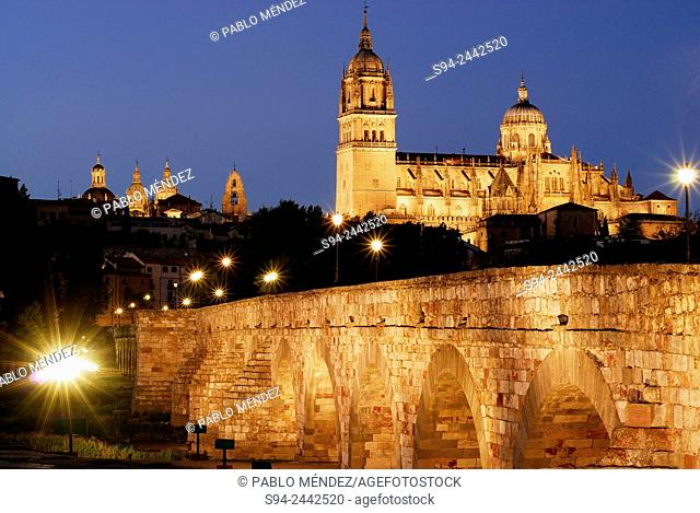 Cathedral and bridge over Tormes river in Salamanca city, Spain