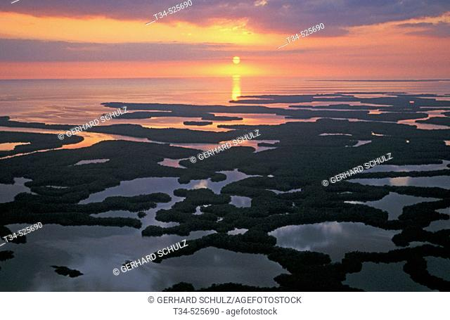 Ten-Thousand Islands. Mangroves. Everglades N. P. Florida, USA