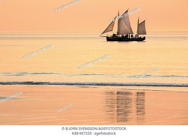 Pearl lugger cruising past Cable beach at sunset. Broome, Western Australia