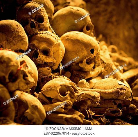 Middle ages skulls