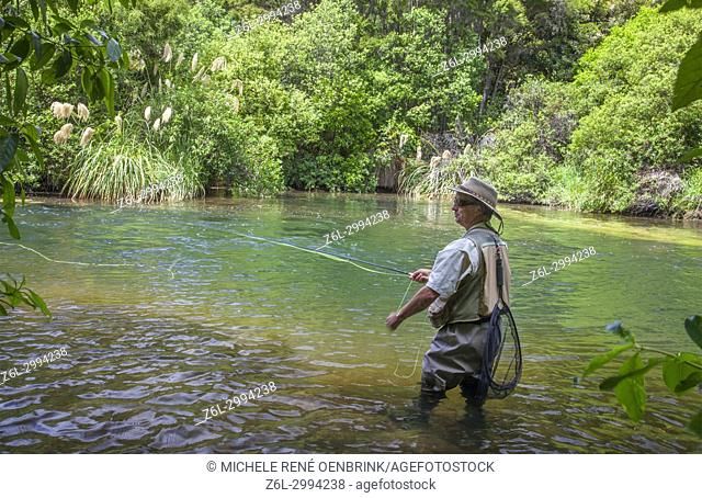Tourists fly fishing with fishing guide in Lake Taupo area stream in New Zealand