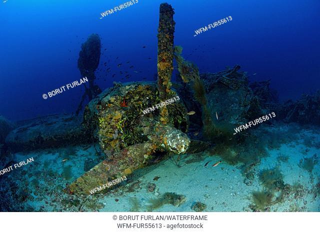 B-24 Liberator Bomber Wreck, Vis, Adriatic Sea, Croatia