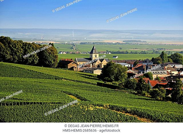 France, Marne, Le Mesnil sur Oger, Cote des Blancs, village with a church in the middle of a vineyards of Champagne classified Premier Cru