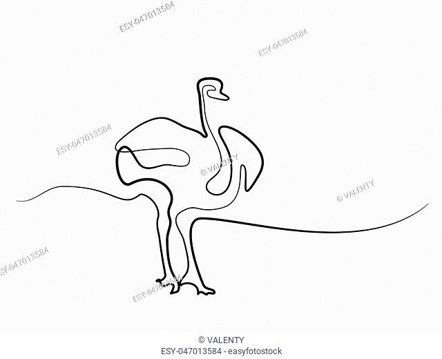 Continuous line drawing. Ostrich walking symbol. Logo of the Ostrich. Vector illustration
