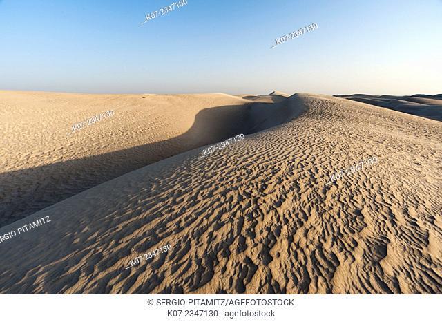 Khaluf desert, Oman