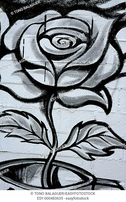 Black and white rose street graffiti paint detail wall