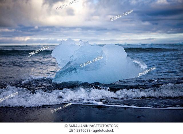 Remnants of icebergs in the black beach, Jökulsárlón Lagoon, Vatnajökull Glacier, Iceland, Polar Regions
