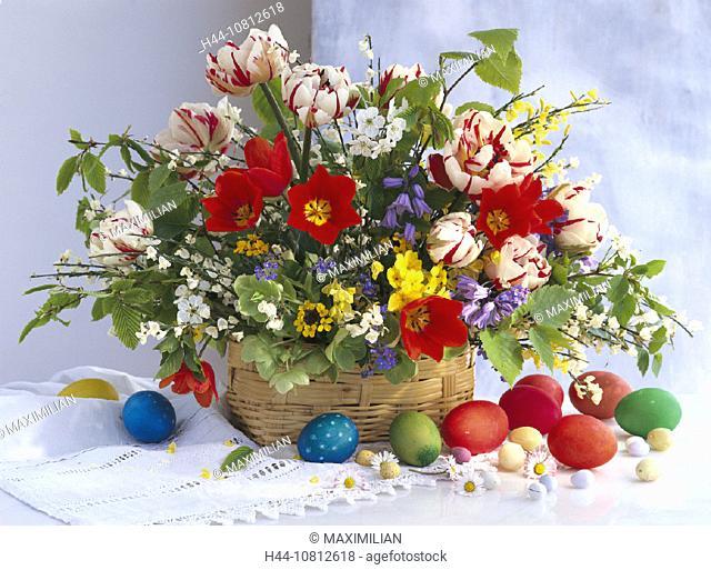 Arrangement, Betula, Blossom, Blossoms, Bouquet, Bouquets, Bunch, Bunches, Cytisus, Decor, Decoration, Decorations