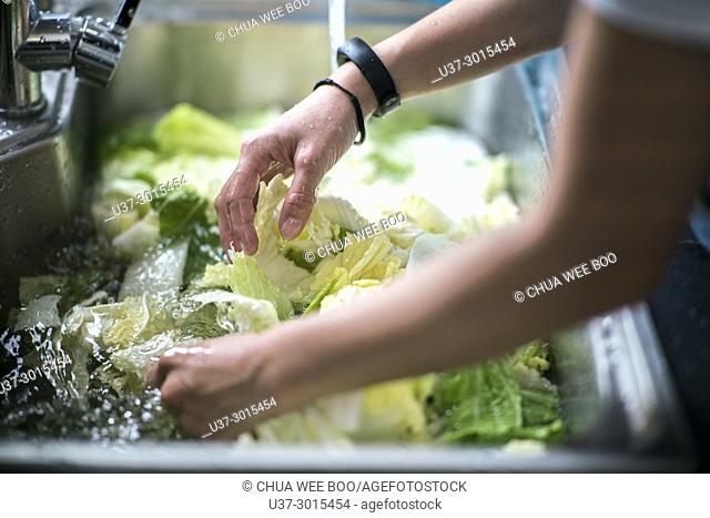 Cleaning vegetables with water, Kuching, Sarawak, Malaysia