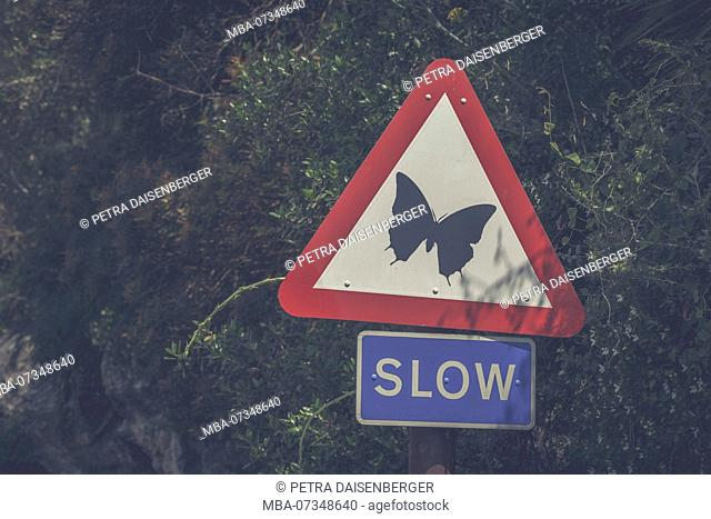 Butterfly on a sign with the word slow, beware of butterflies