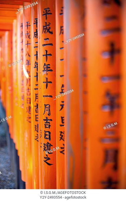 Fushimi Inari Shrine, Shinto Shrine in Kyoto, Japan