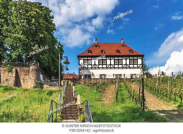 Summer residence Castle Hoflössnitz is a building in the wine-growing area in Radebeul near Dresden, Saxony, Germany, Europe