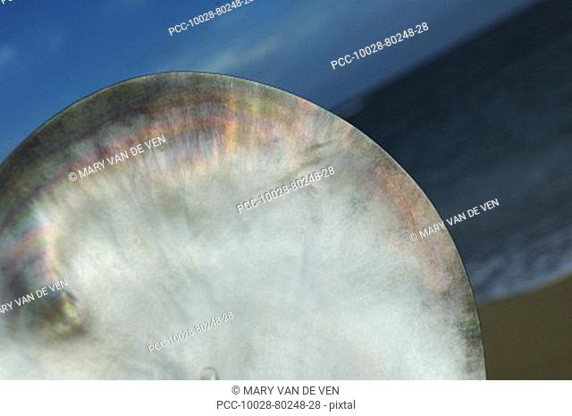 Detail view of polished Tahitian oyster shell showing opalescence, ocean, sky and sand at dusk