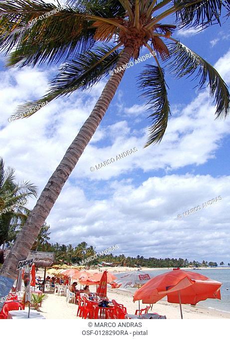 people resting at bahia beach shore