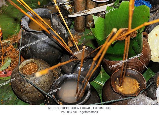 Lao hai, rice alcohol, jars, New year festival, Ban Sob Tchen village, Luang Prabang province, Laos