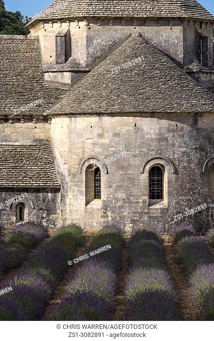 Senanque Abbey with lavender fields near Gordes Vauclause Provence-Alpes-Cote d'Azur France