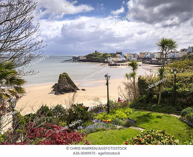 Tenby Harbour & North beach Tenby Pembrokeshire Wales