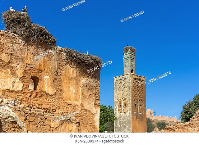 Chellah, near Rabat, Roman ruins and Marinid Necropolis, Morocco