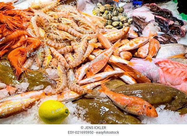 Fisch und Schalentiere auf einem Markt