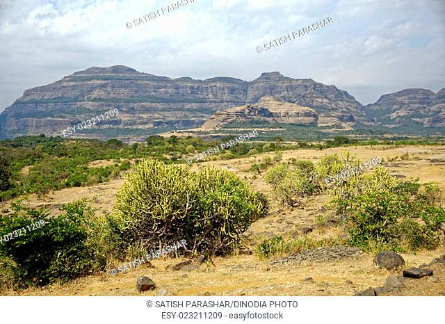 Mountain landscape at malshej ghat, maharashtra, India, Asia