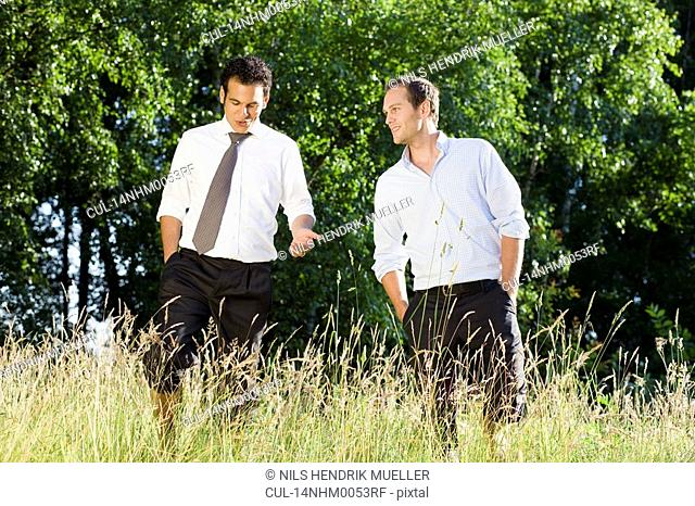 two businessmen talking in field
