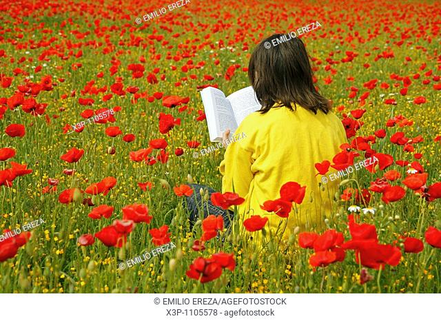 Reading a book in a poppies field