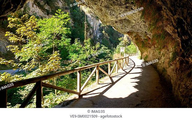 Senda del Oso (The Bear's Trail), between Santo Adriano and Quirós municipalities, Asturias, Spain