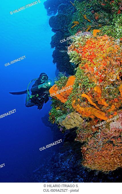 Diver exploring Palancar reef, Cozumel, Mexico