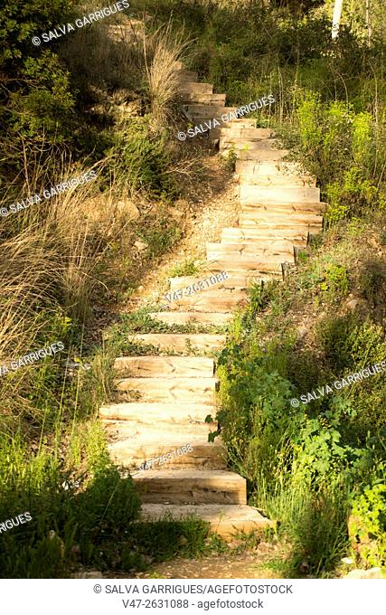 Staircase in the forest, Genoves, Valencia, Spain, Europe