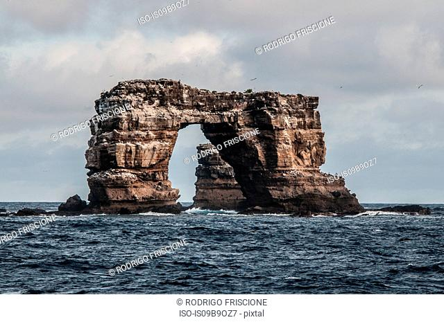 Darwin's arch, Darwin Island, Seymour, Galapagos, Ecuador, South America