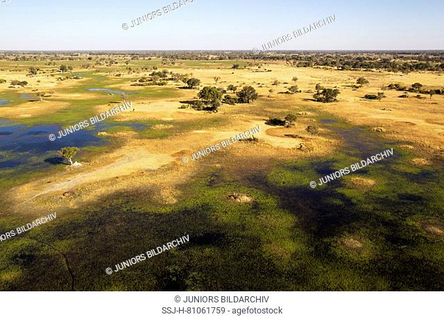 Freshwater marshes with streams, channels and islands, in the late evening, aerial view, Okavango Delta, Moremi Game Reserve, Botswana