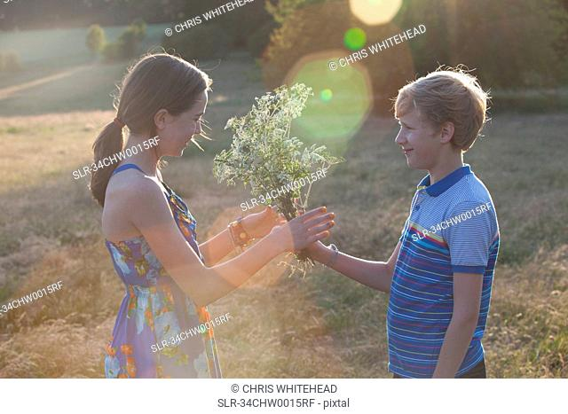 Boy giving girl flowers in field