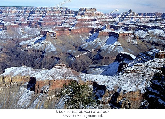 Fresh snow in the Grand Canyon, Grand Canyon National Park, Arizona, USA