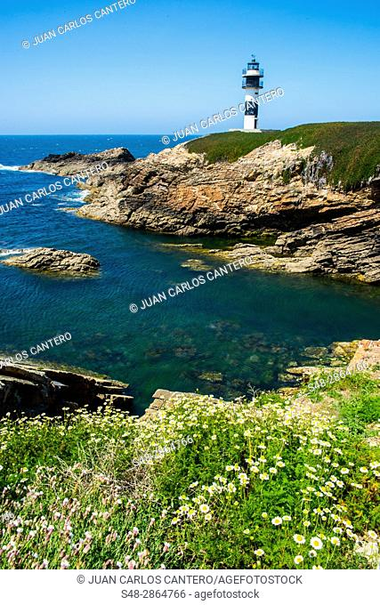 Isla Pancha. Lugo. Galicia. Spain