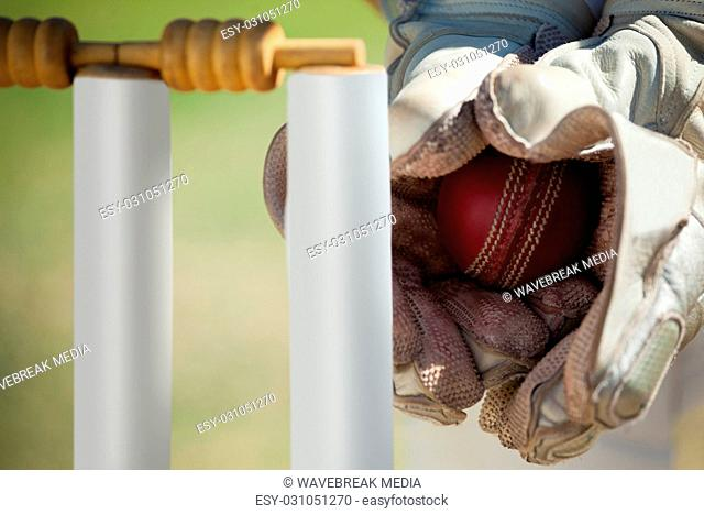 Hands of wicketkeeper catching ball behind stumps