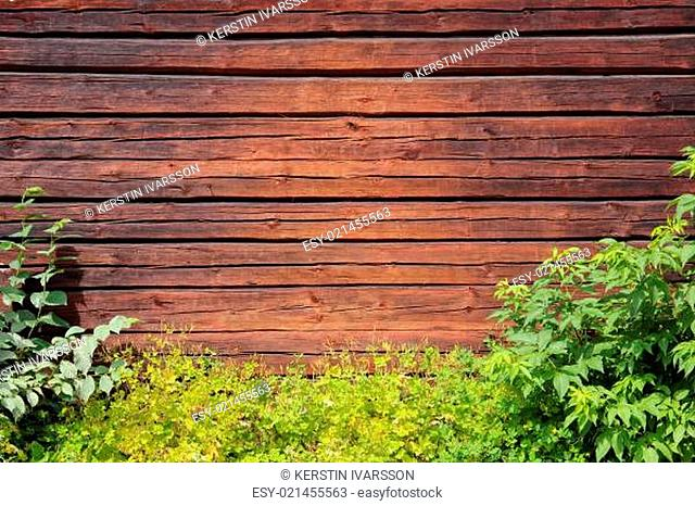 Background - Old wooden wall, framed with green bushes and grass