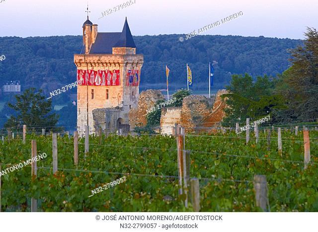 Chinon, Castle, Château de Chinon, Chinon Castle at Dawn, Indre-et-Loire, Pays de la Loire, Loire Valley, UNESCO World Heritage Site, France