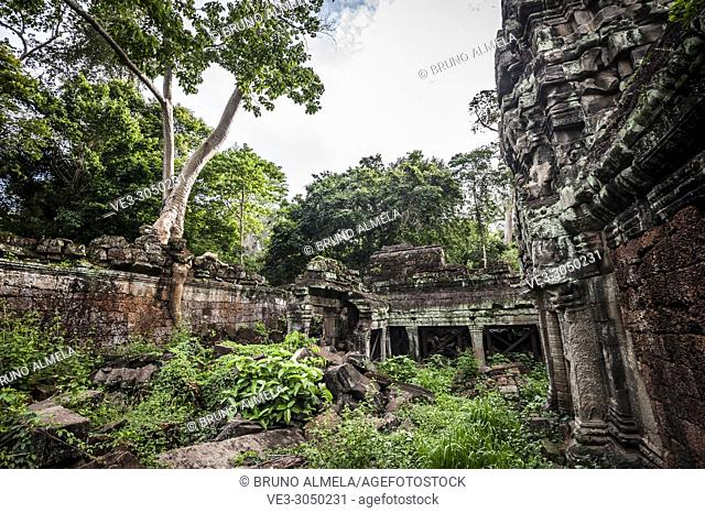 Jungle growing over Preah Khan temple, Angkor Complex (Siem Reap Province, Cambodia)