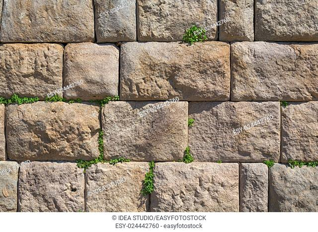 Natural ancient stone wall texture with grass bunches