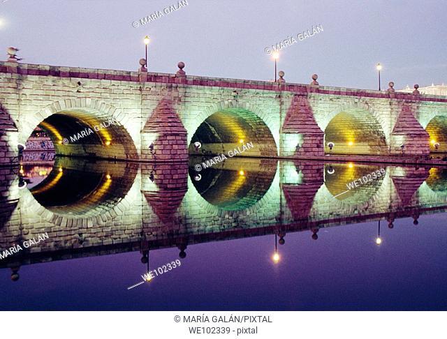 Segovia bridge at night. Madrid, Spain