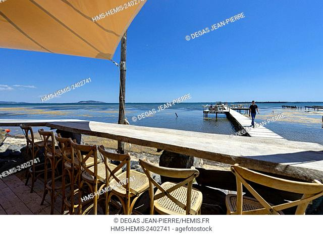 France, Herault, Marseillan, Pond of Thau, Mas Tarbouriech, St Barth restaurant, counter in front of a pond extended by a pier with the Saint clear Mount in the...