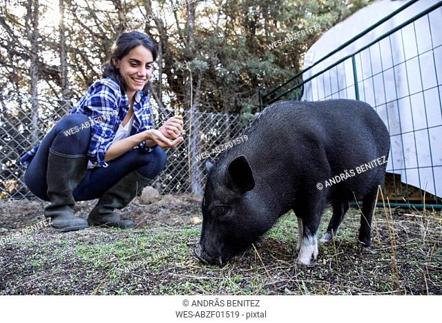 Woman with pig on a farm