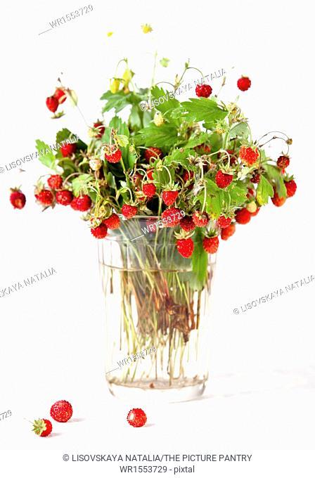 Bouquet of wild strawberries on white background