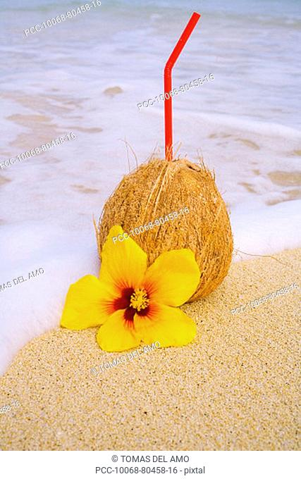 A coconut drink with straw sticking out and flowers on a tropical beach