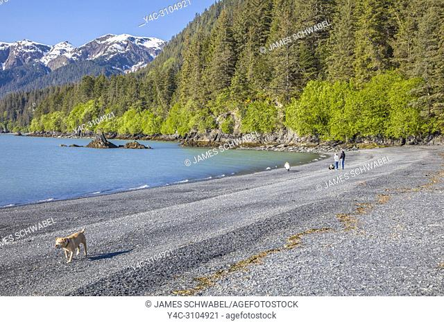 Family with dog on beach at Lowell Point on Resurrection Bay in Seward Alaska