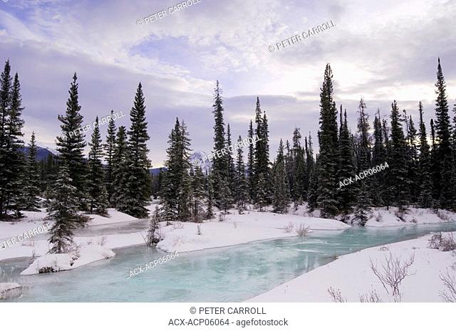 Athabasca River in winter, Jasper National Park, Alberta, Canada