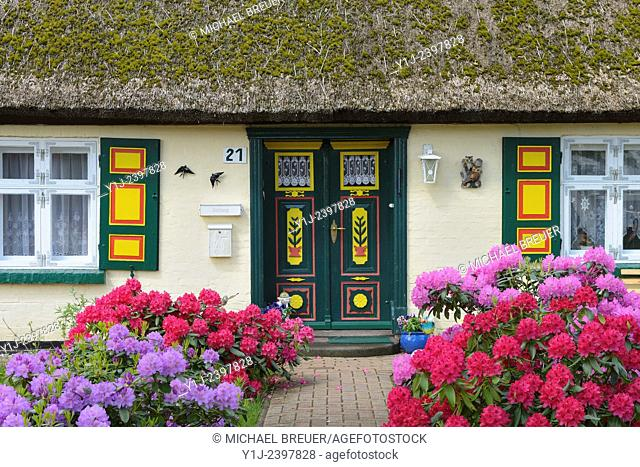 Typical house with typical front door, Village Born, Darss, Fischland-Darss, Baltic sea, Mecklenburg-Western Pomerania, Germany, Europe