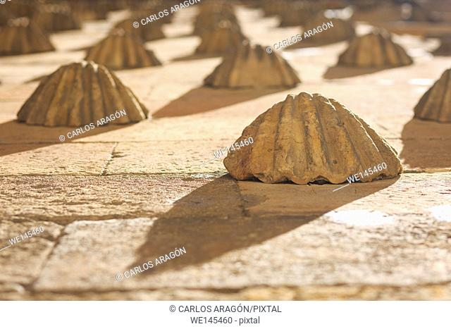 Detail of the House of Shells in Salamanca, Spain